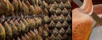 Jambon de Bayonne - Fabrication et vente de Jambon de Bayonne