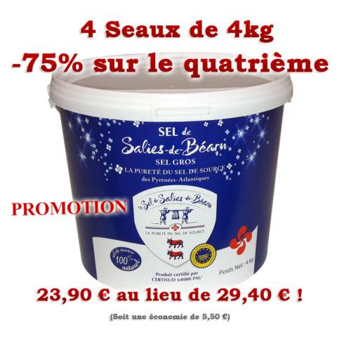 Seau de Sel Gros de Salies-de-Béarn 4kg